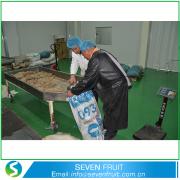 Extracto de la planta GMP naturales a granel de aceite de nuez