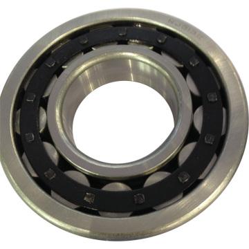 Roulement à rouleaux cylindriques Simple rangée Nj313e