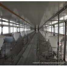 Automatische Zufuhr der Schweinefarm-Ausrüstungs-Linie