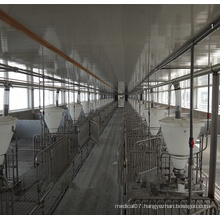 Pig Farm Equipment Auto Feeding Line