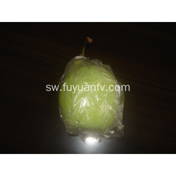 Export Quality Quality ya Fresh Ya Pear