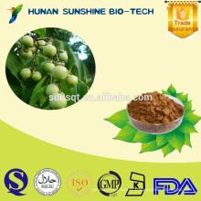 Produit sain Anti-tumeur Soapberry extrait 40% / 70% Saponines de saponines