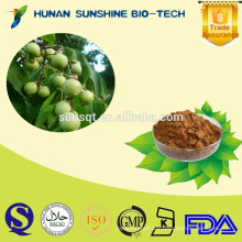 Healthy product Anti-tumor Soapberry extract 40%/70% Soapberry saponins