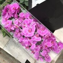 Professional Manufacturer Rectangular Acrylic Rose Box Luxury for Sale