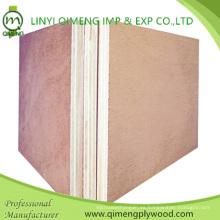 Dos veces, caliente, presión, 18mm, madera contrachapada comercial, con, álamo, base