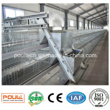 Automatic Pullet Cage Baby Chicken Cage