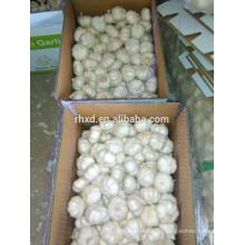 6.0 см чеснок 10 кг коробка чисто белый чеснок для Бразилии