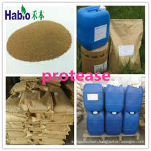 New Protease in Feed, Textile, Detergent