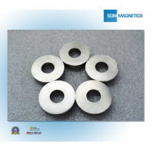 China ISO/Ts 16949 Certificated Ring Magnet