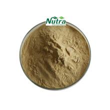 Bio Tribulus Terrestris Extrakt Pulver