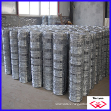 Hot Dipped Galvanized Grassland Fence (TYD-098)
