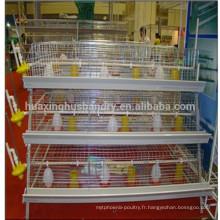 Création de coopérative de poulet bébé entièrement automatique à prix abordable