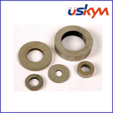 SmCo Rare Earth Magnets (R-006)