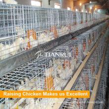 Китай автоматические клетки цыпленка цене птицеводство оборудование