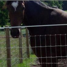 3 Rail Black Horse Clôture