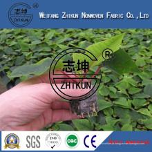 Tela UV dos Nonwovens da tampa da planta da agricultura
