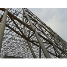 Space Frame Steel Roof of Swimming Pool