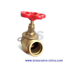 Casting brass or bronze hydrant landing valve L101