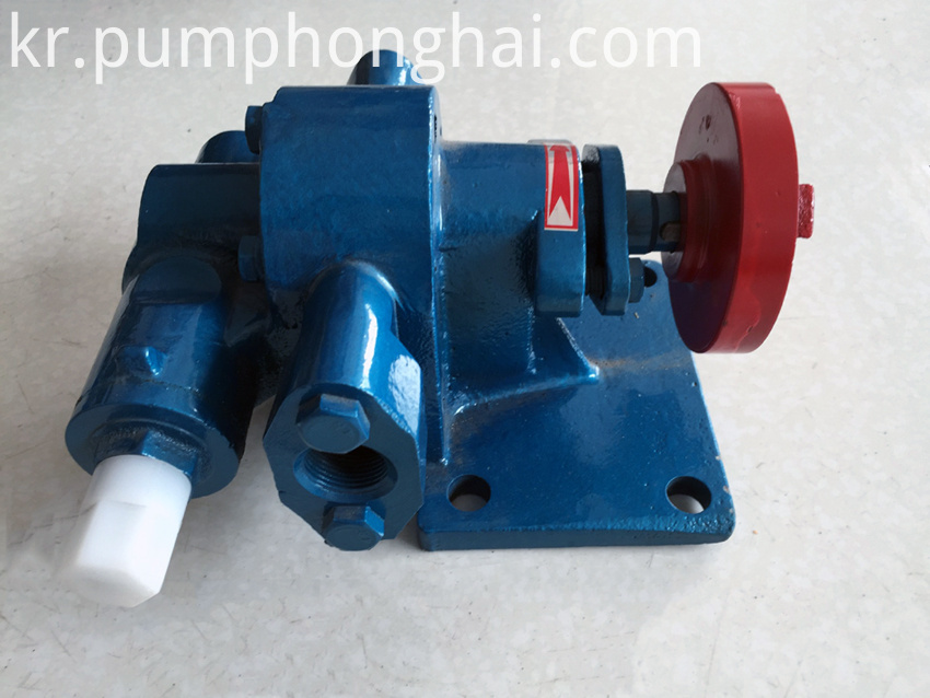 Electric oil transfer pump