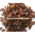 wholesale top quality raisin(sun dried)