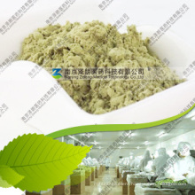 Manufacturer 80~200 Mesh Dehydrated Celery Powder