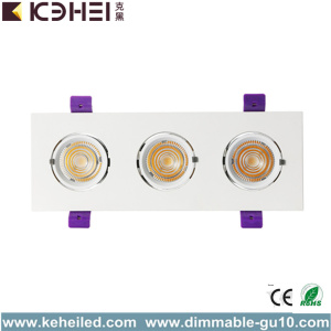 36W Drei Haupt High Power LED Trunk Downlight