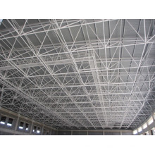 Large Size Swimming Pool Roof with Space Frame Structure