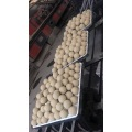 99% High Alumina Ball Inert Ceramic Ball