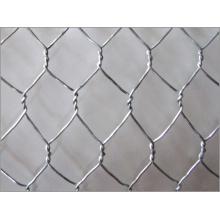 Galvanizado / PVC hexagonal fábrica de malla de alambre