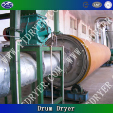 Pianta di Rotary Dryer in botte