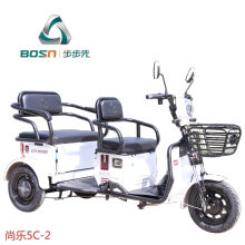 Electric Tricycle electric scooter cargo trike