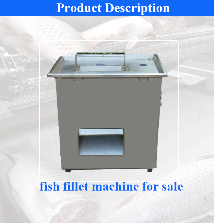 Fish Cutting Machine 01