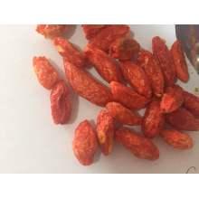 Ningxia Gelze-Dry Goji Berry (Wolfberry)