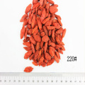 Superfood Organic 220Grains / 50G Goji Berry
