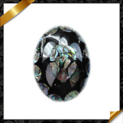 Hot Abalone Paua Shell Jewelry, Genuine Shell Pendant, Sea Shell Necklace (APS006)