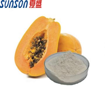 Enzym Papainpulver in Lebensmittelqualität aus Papaya