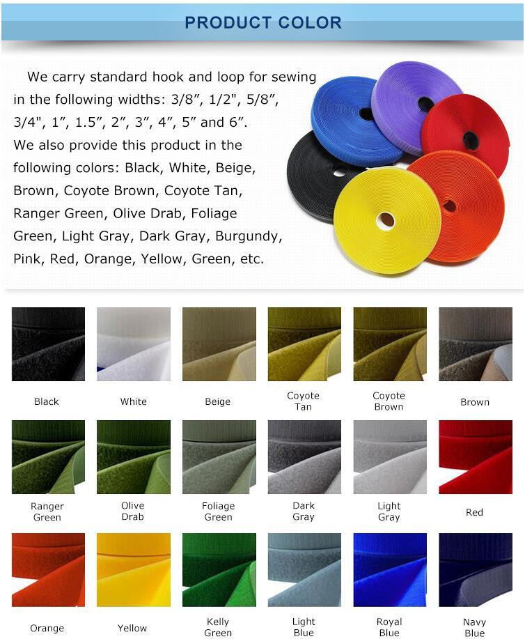 Colored Elastic Band