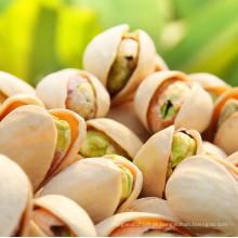 Melhor Qualidade Pistachio Nuts