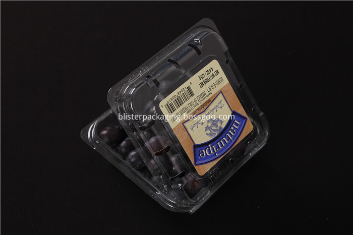 Plastic Blueberry Box