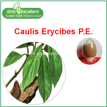 extracto natural de Caulis Erycibes