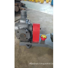 Food grade plant oil transmission gear pump