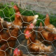 PE/PP/HDPE Anti-UV plasit plain mesh for animail