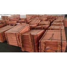 99.99 Pure / Catodo puro Cobre / Cobre Cathodes Preço para Venda