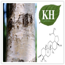 Betulinic Acid, Birch Bark Powder Extract