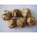 2014 новый китайский производитель ферментированного черного чеснока