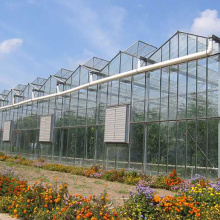 Professional for Vegetables Glass Greenhouse Toughened glass for venlo glass greenhouse export to Cuba Wholesale