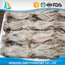Tentáculo congelado loligo chinensis tentáculo, illic tentacle.frozen tentáculo lula e cabeça à venda