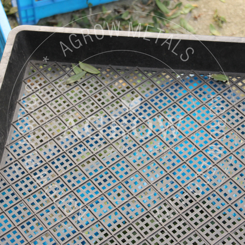 Garden Plant Breeding Trays