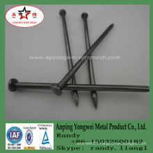 YW--Common Nail Iron Nail Factory