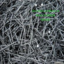 EXW Common Iron Nails Nails Machine Nail Gun en China